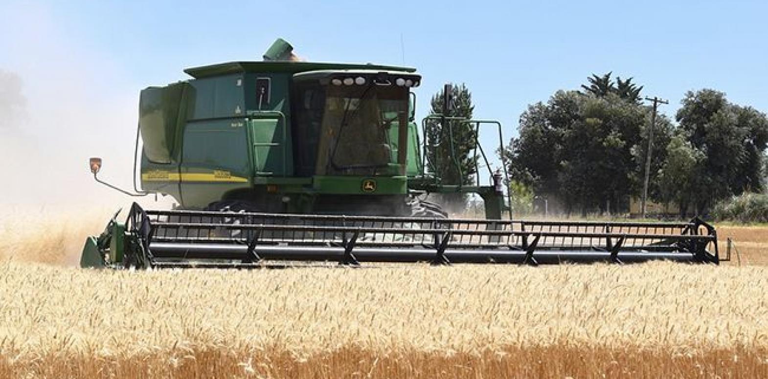 Рост производства сельхозпродукции замедлился почти в три раза