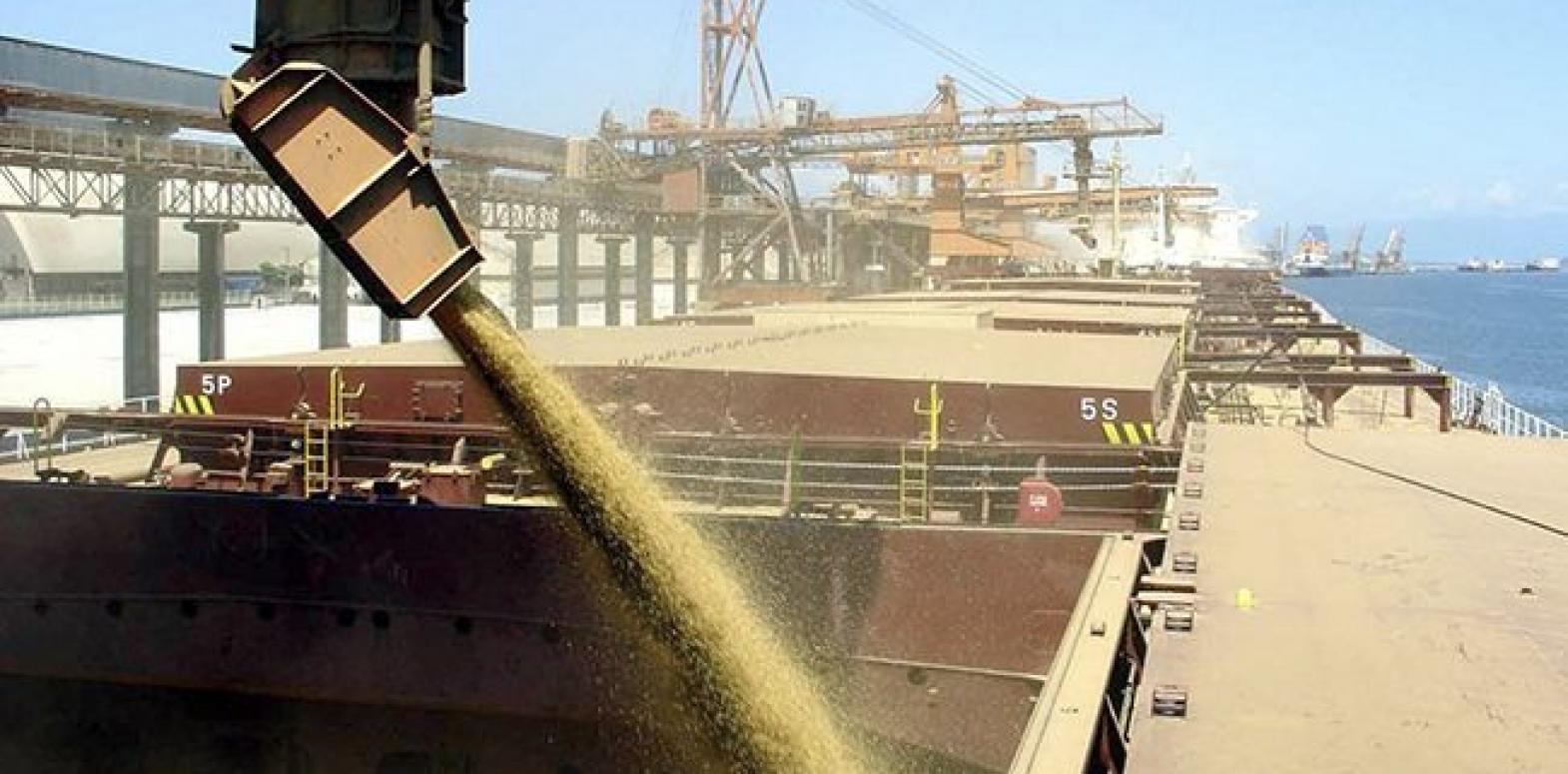 Украина значительно сократила экспорт пшеницы