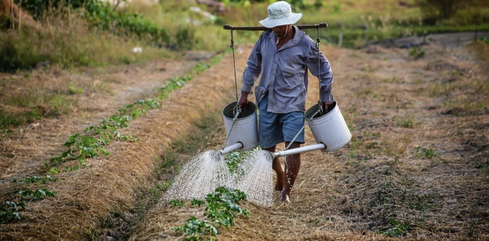 В Раде готовят новый налог для малых фермеров